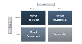 product market matrix van Ansoff
